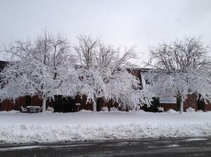 Last week's snowstorm.