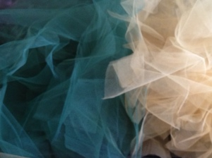 Tulle, Tulle, and More Tulle